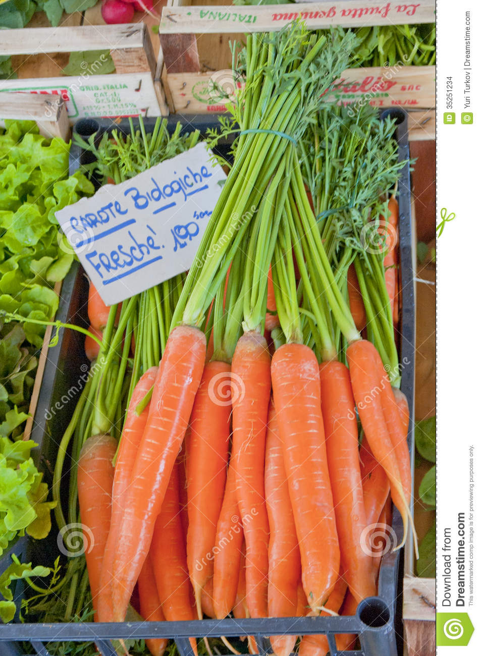 how to clean fresh picked carrots