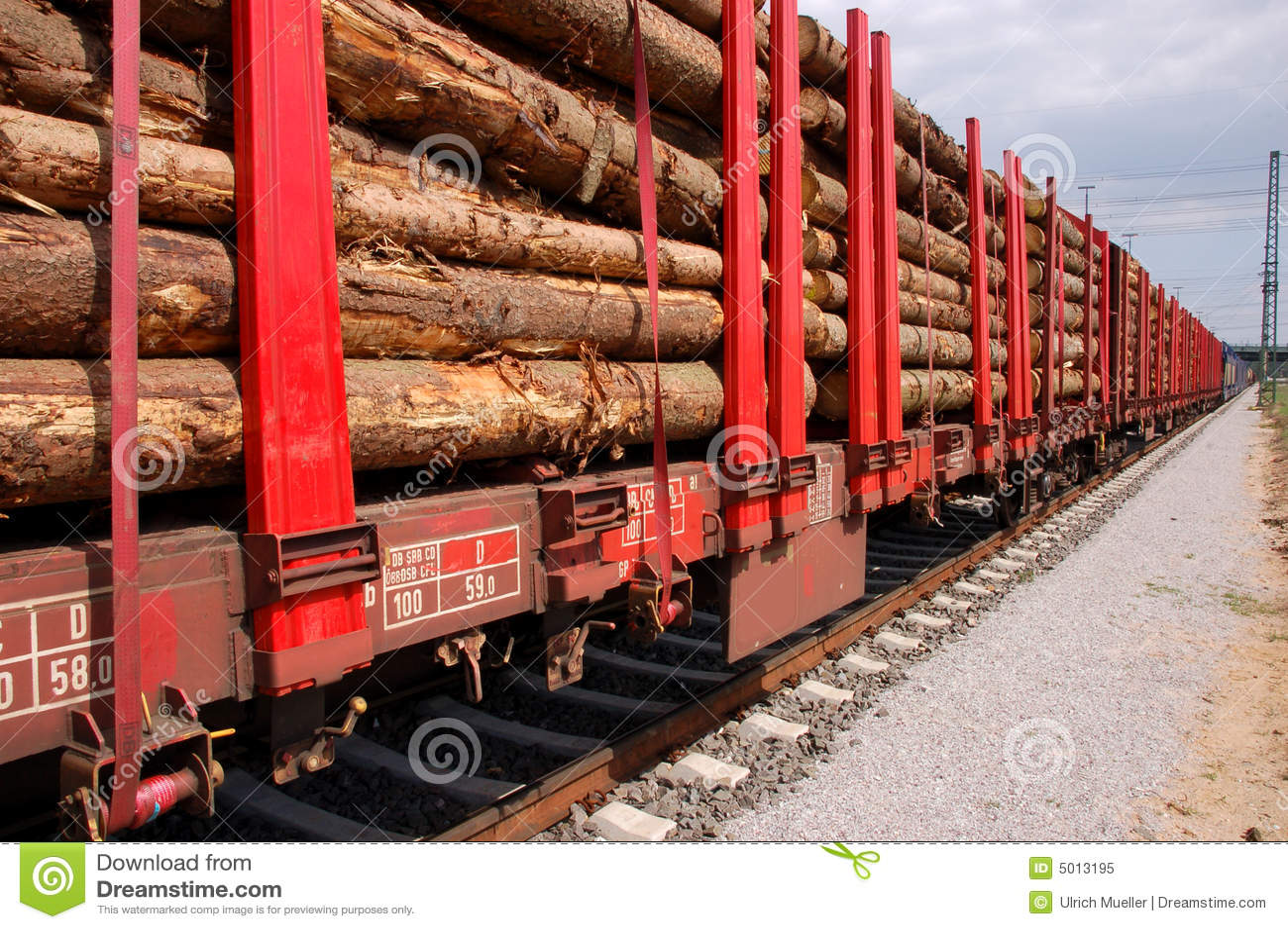 Biomass transport