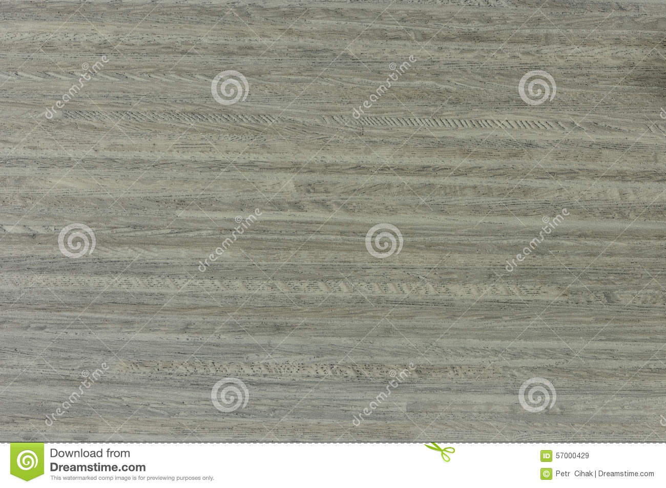 Birch imitation floor covering stock photo image 57000429 for Floor covering software free