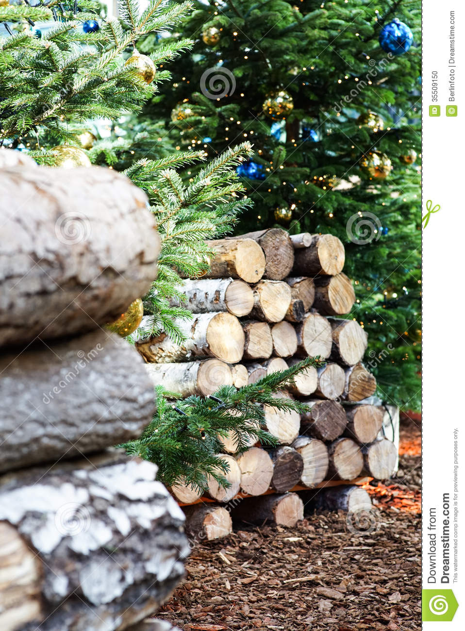 Birch logs and christmas tree stock photo image 35509150 for What to do with tree logs
