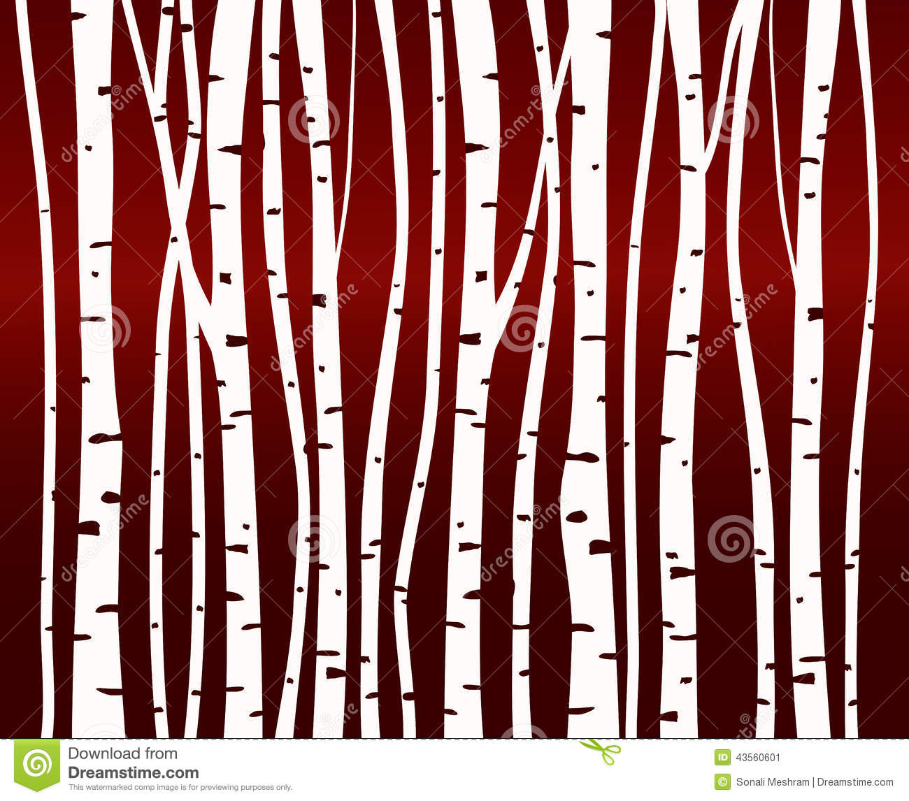 Birch Tree Forest Pattern Stock Illustration Image Of