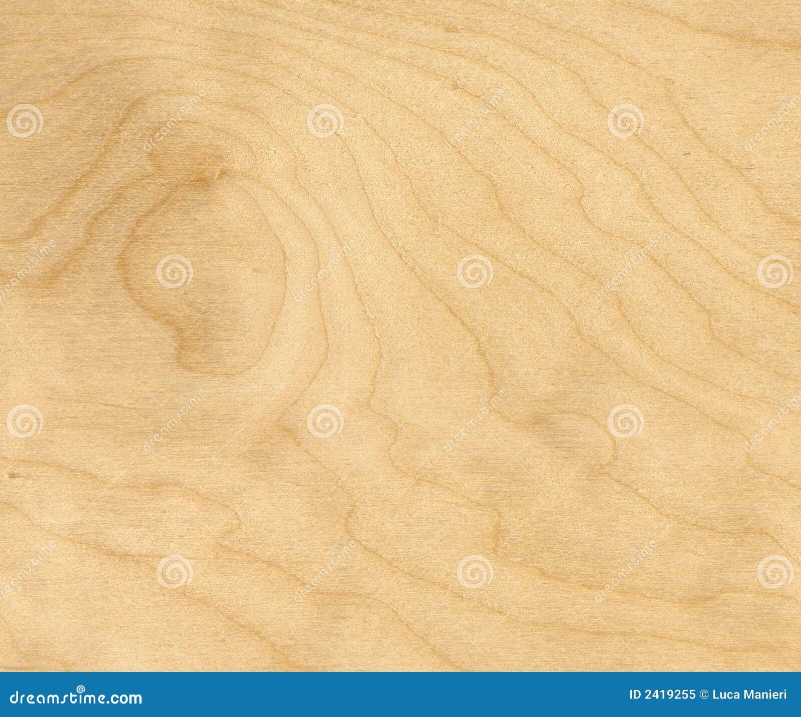 birch wood background stock image image of wood background 2419255