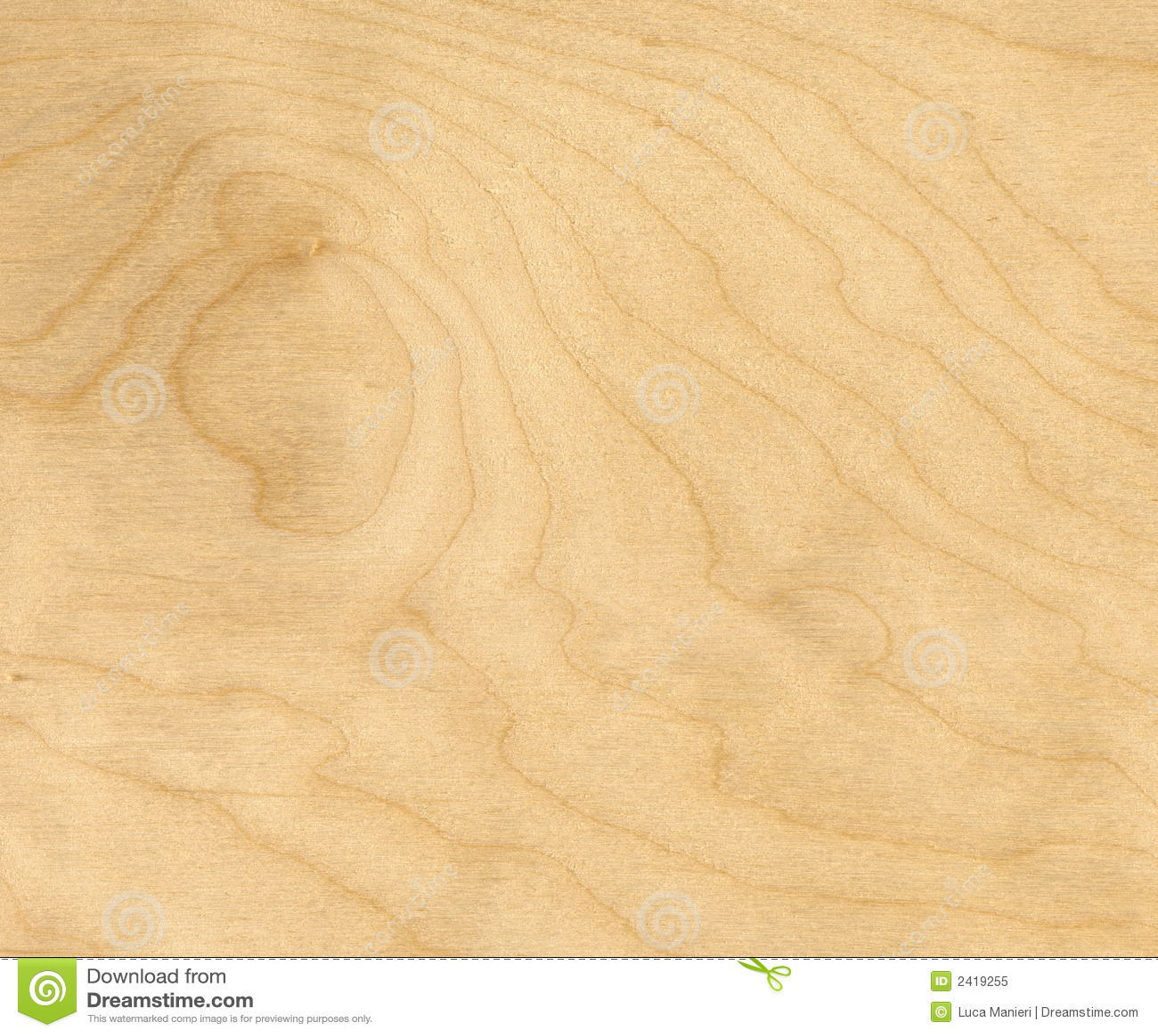 Birch Wood Background Royalty Free Stock Photo Image