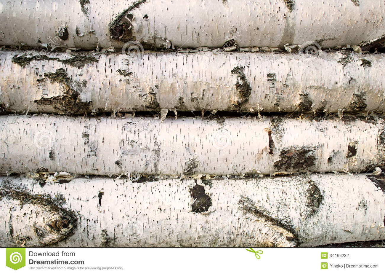 Birch wood background stock photography image 34196232 for Birch wood cost