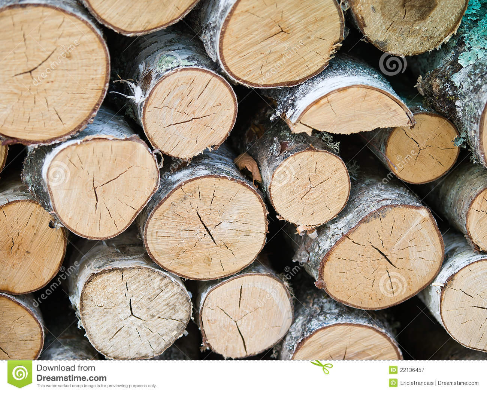 Birch Wood Logs ~ Birch wood logs wallpaper stock image of lying