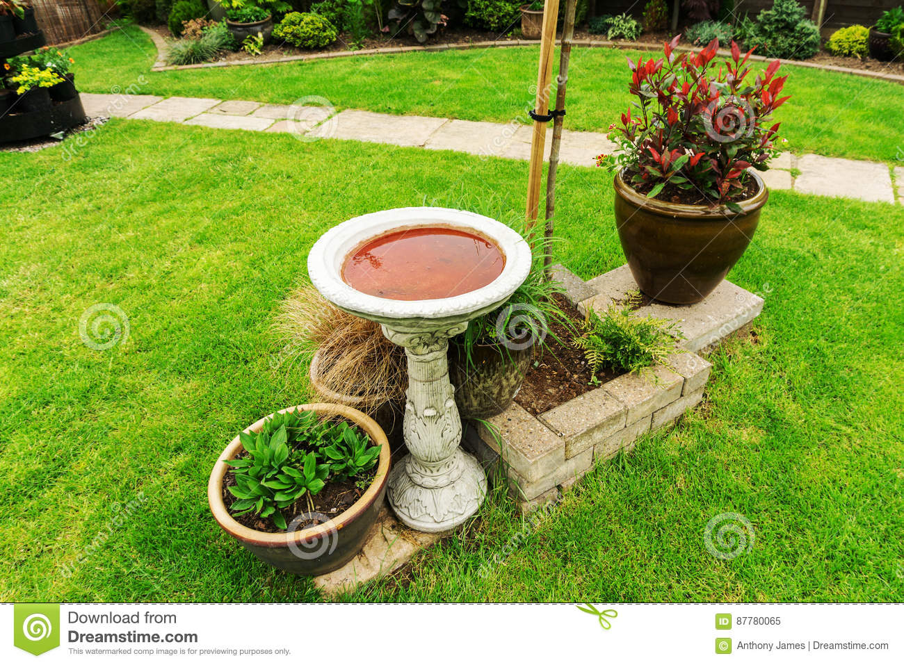 Download Bird Bath In A Garden Stock Image. Image Of Green, Centre    87780065