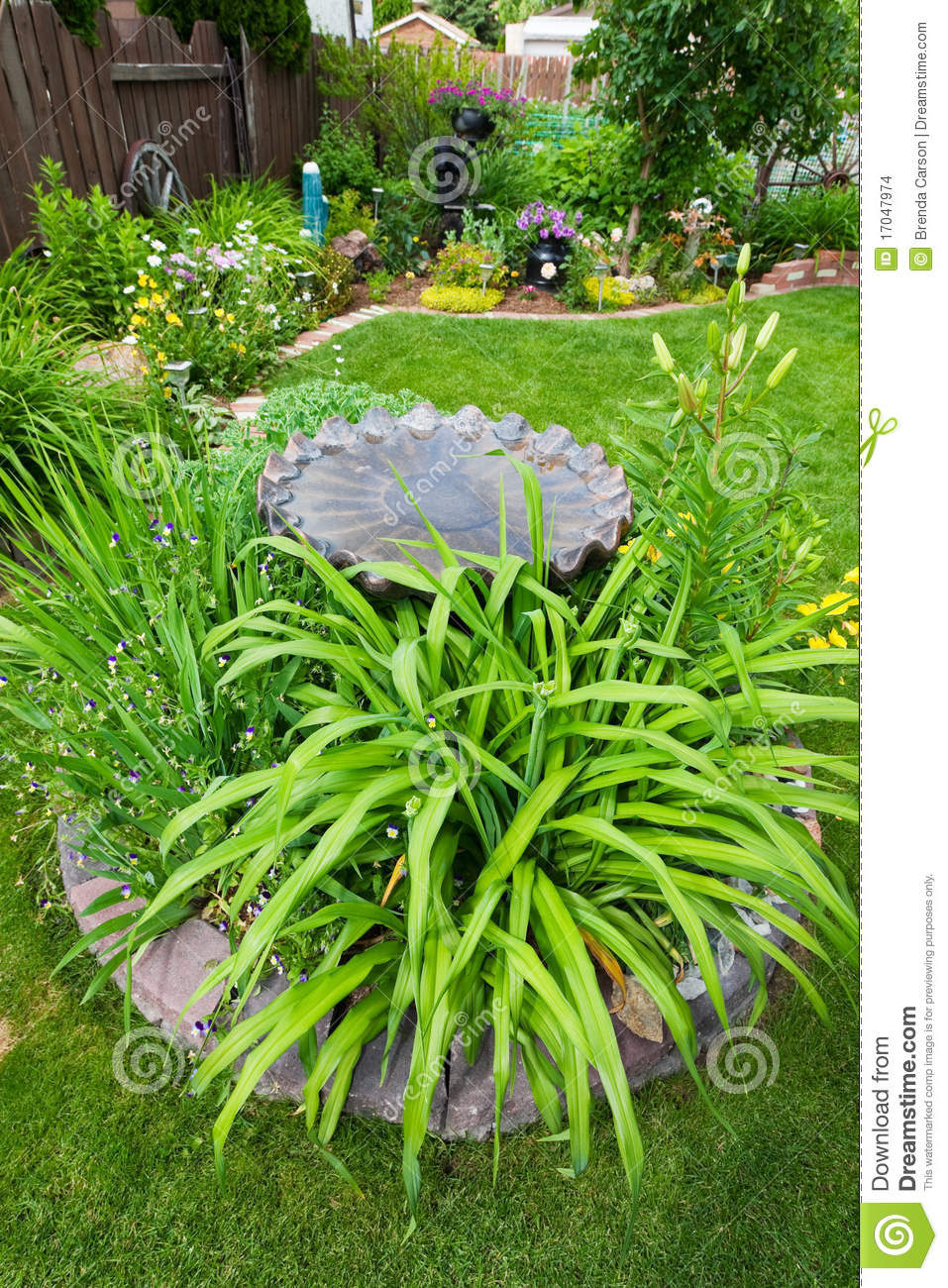 Bird Bath Garden Feature Stock Images Image 17047974