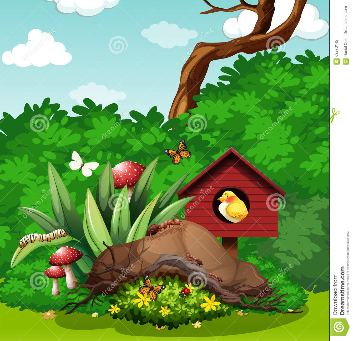 Bird And Bugs In The Garden Stock Vector - Illustration of