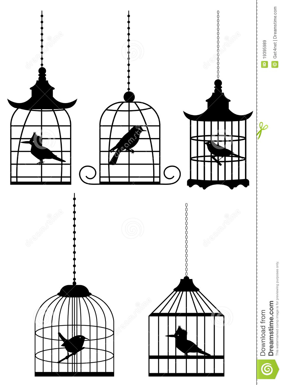bird in cage stock vector image of animal color antique 19395989. Black Bedroom Furniture Sets. Home Design Ideas