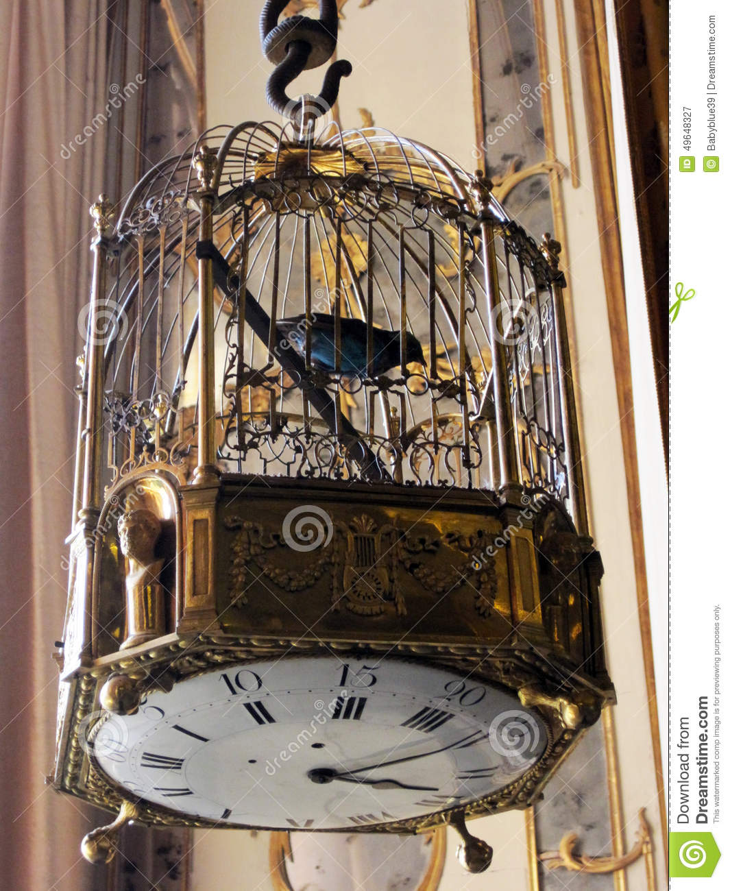 bird cage watch stock image image of animal caserta 49648327. Black Bedroom Furniture Sets. Home Design Ideas
