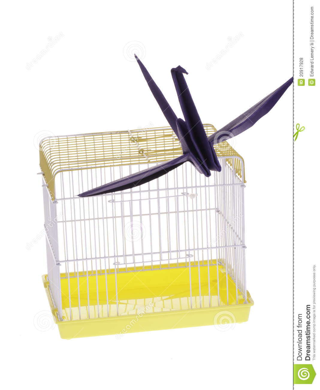 More similar stock images of   Bird escape from cage  Bird Freedom From Cage