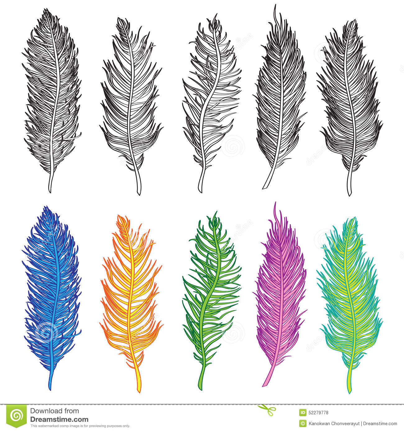 Gallery For > Bird Feathers Drawing Bird Feathers Drawing