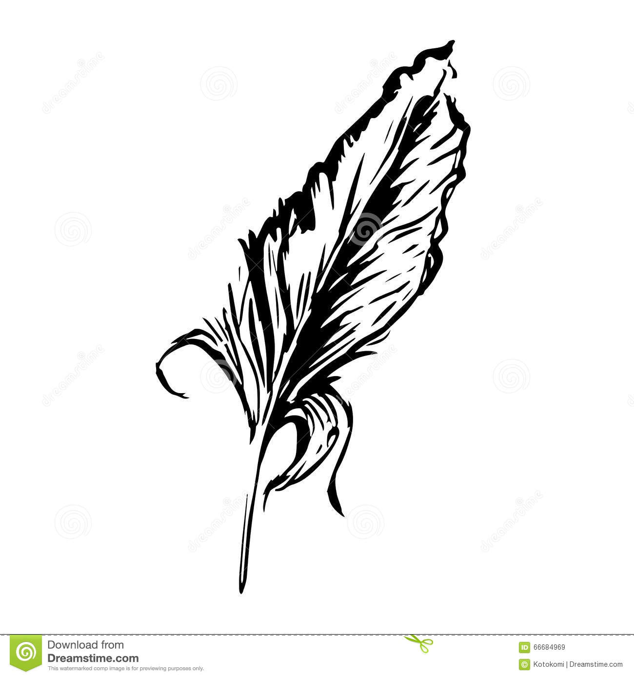 bird feather symbol of knowledge writing and learning