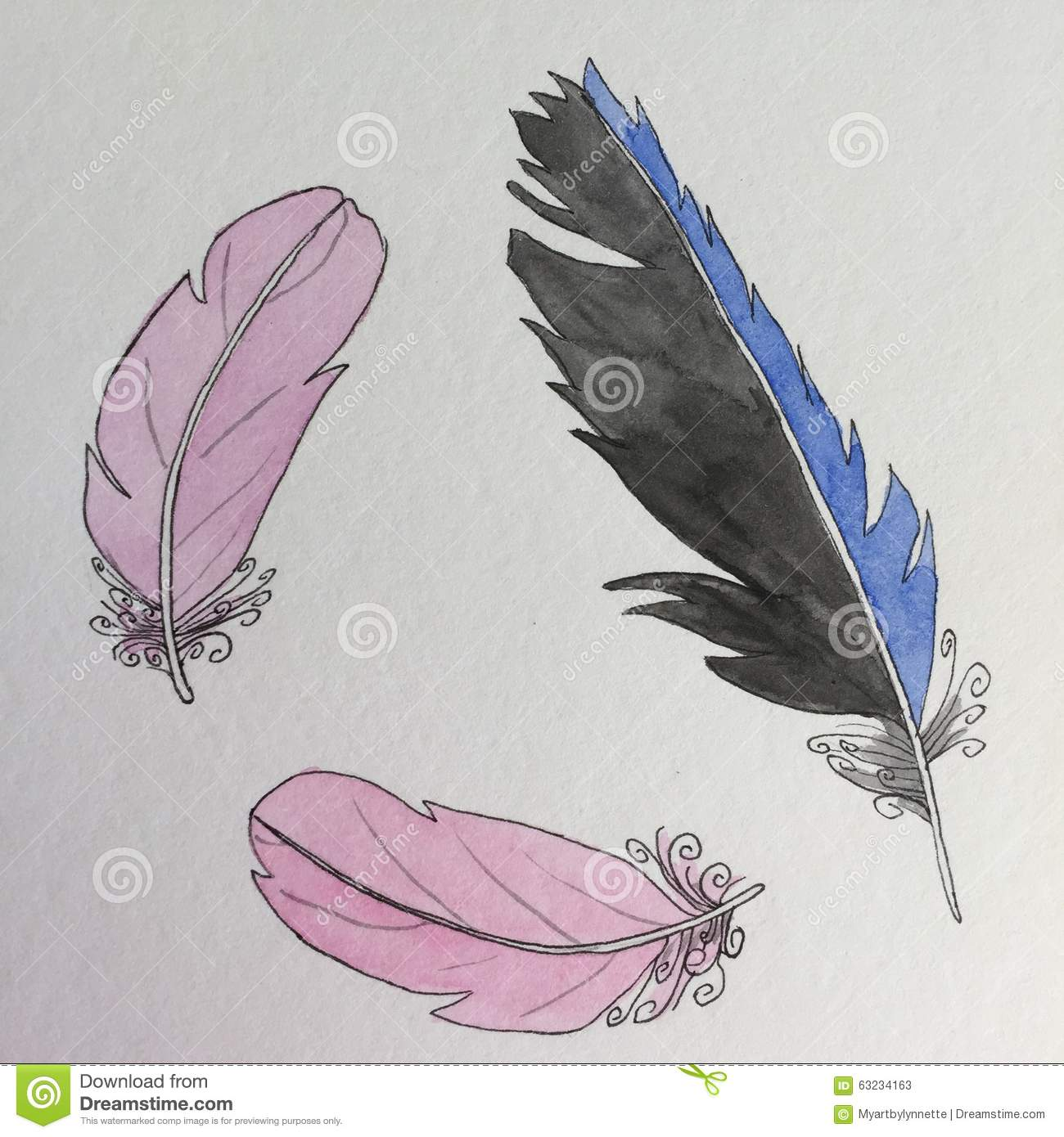 Bird Feathers Pen And Ink Drawing Stock Illustration