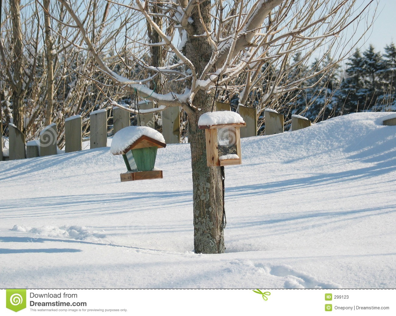 Download Bird Feeders In Winter stock image. Image of seed, nature - 299123