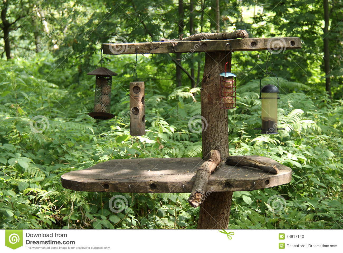 Bird Feeding Table Images | thefemalecelebrity.com