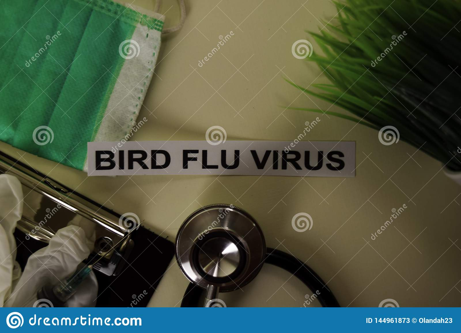 Bird Flu Virus with inspiration and healthcare/medical concept on desk background