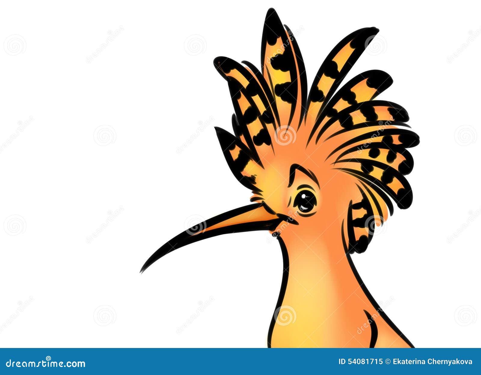 bird hoopoe cartoon illustration stock illustration