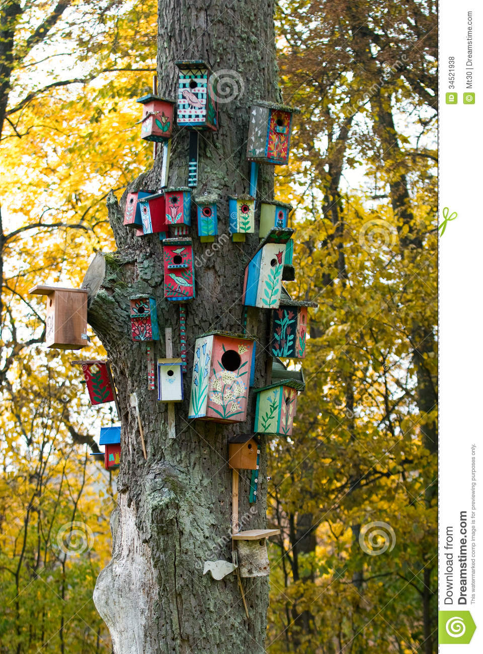 Bird houses stock photo image of birdhouse bird wood for Colorful tree house