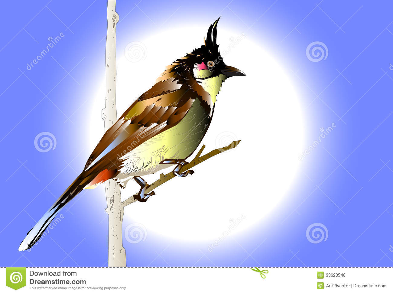 Graphic Natural Drawing Images Bird Decorated With Lines And Colors
