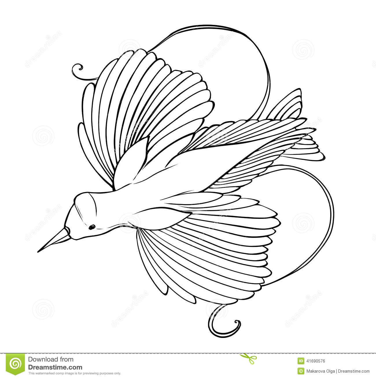 Bird Of Paradise Coloring Page