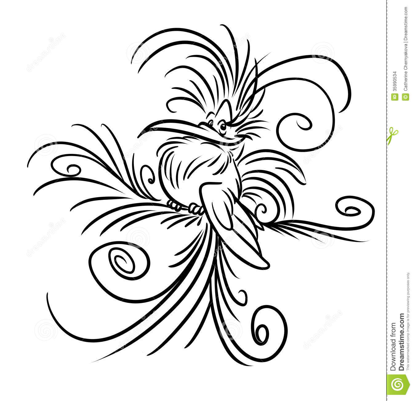 Contour Line Drawing Bird : Bird of paradise fluffy feathers cartoon stock