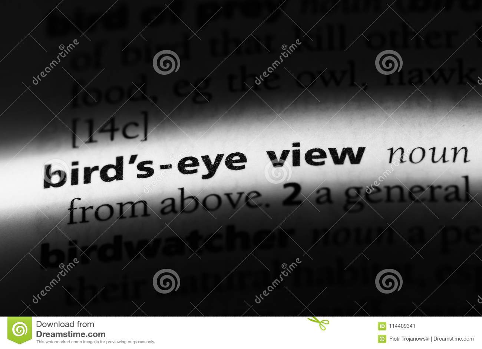 bird& x27;seyeview