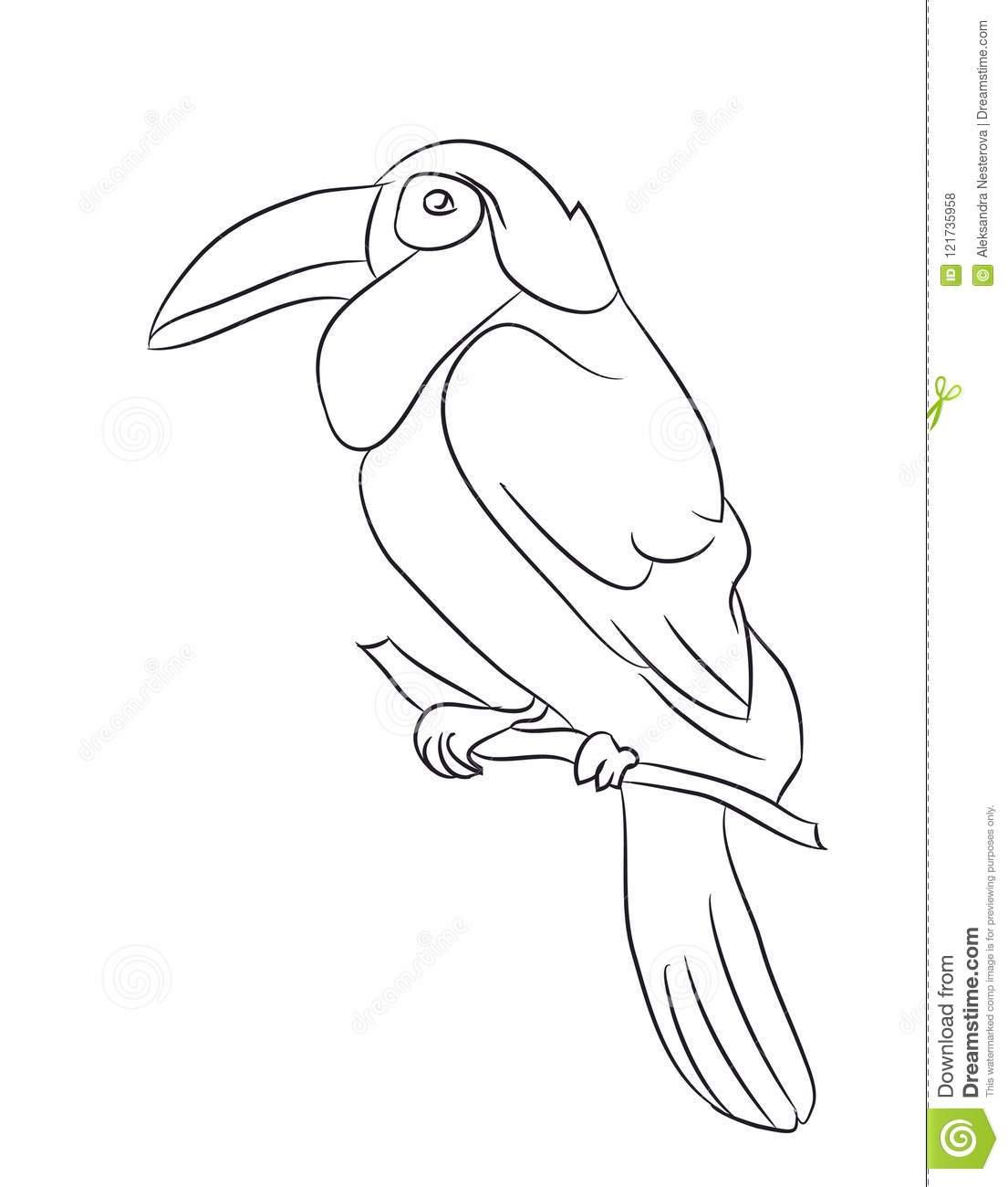 Bird Sitting On A Branch Lines Vector Stock Vector