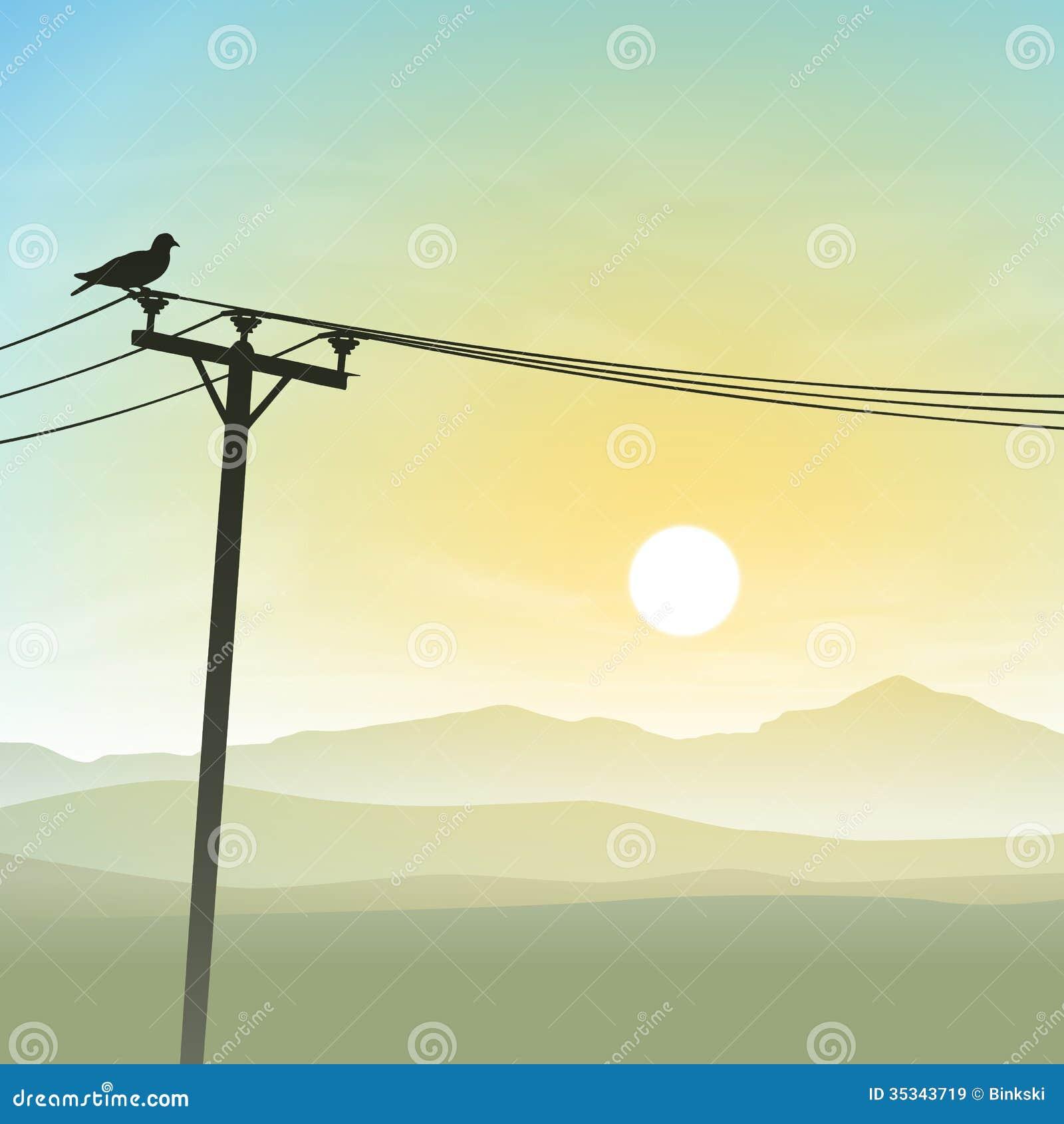 Bird on Telephone Lines stock vector. Illustration of perch - 37438967
