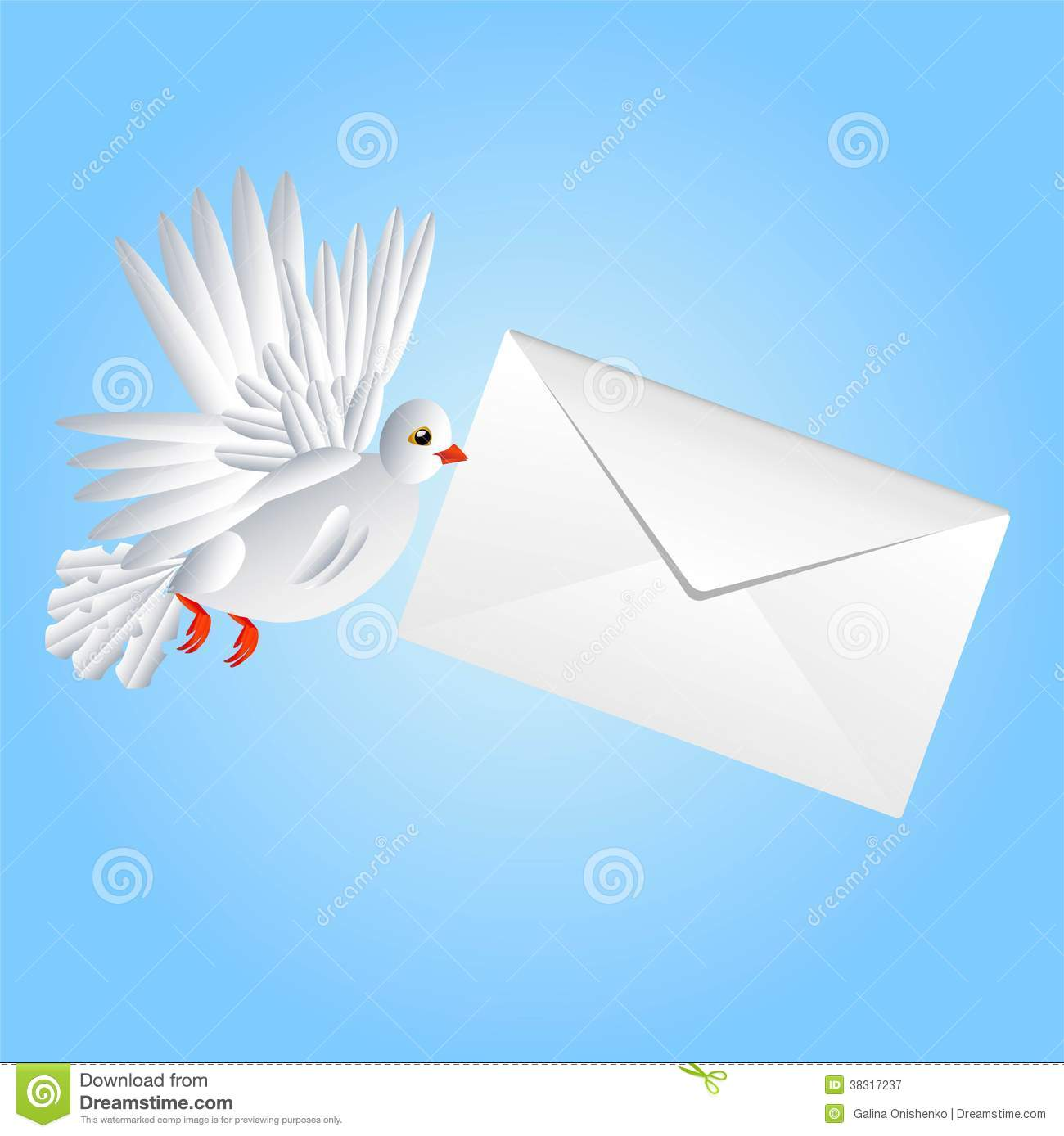 Bird a white pigeon carries a white envelope in a beak