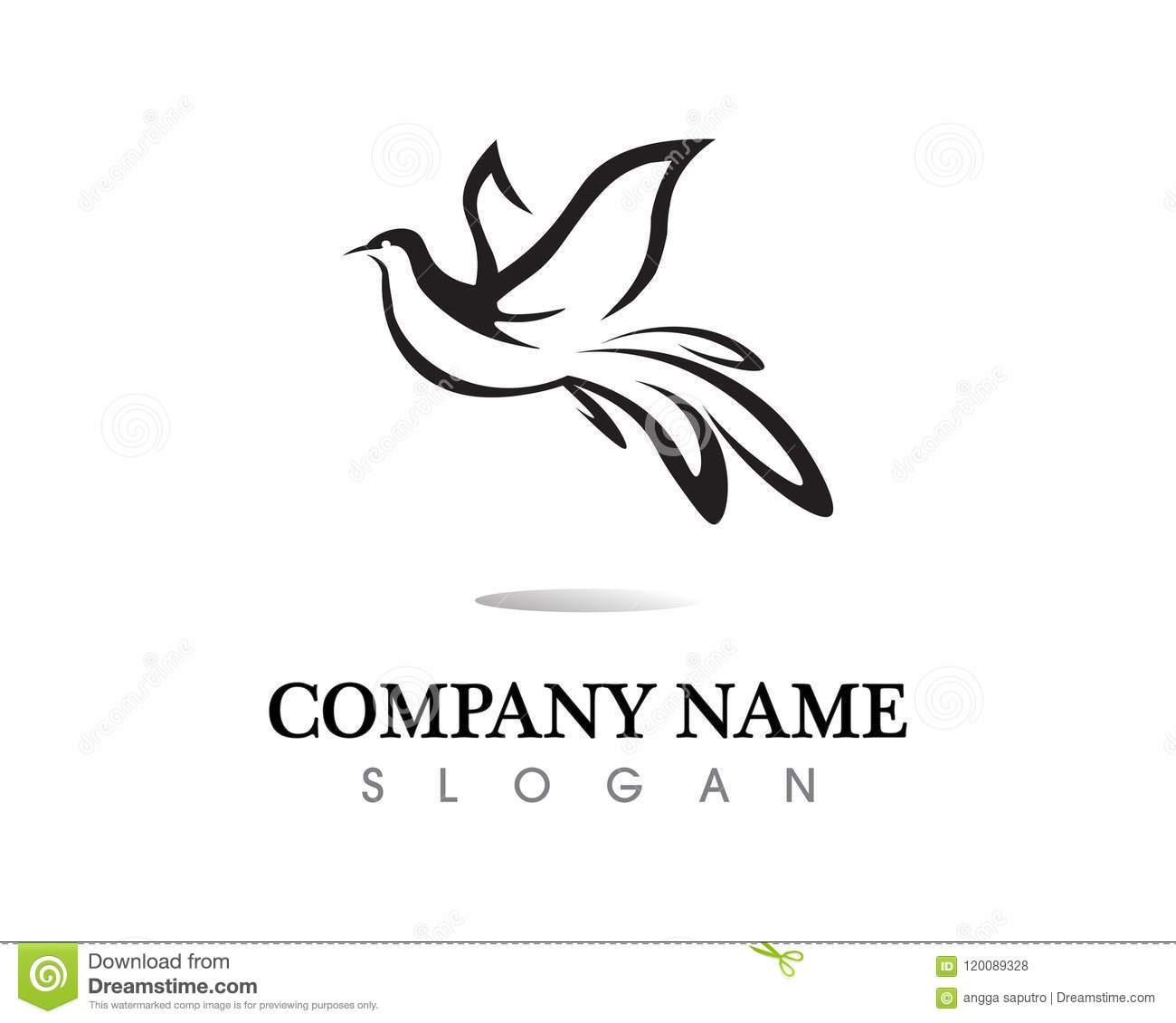 bird wing dove logo template illustration stock vector