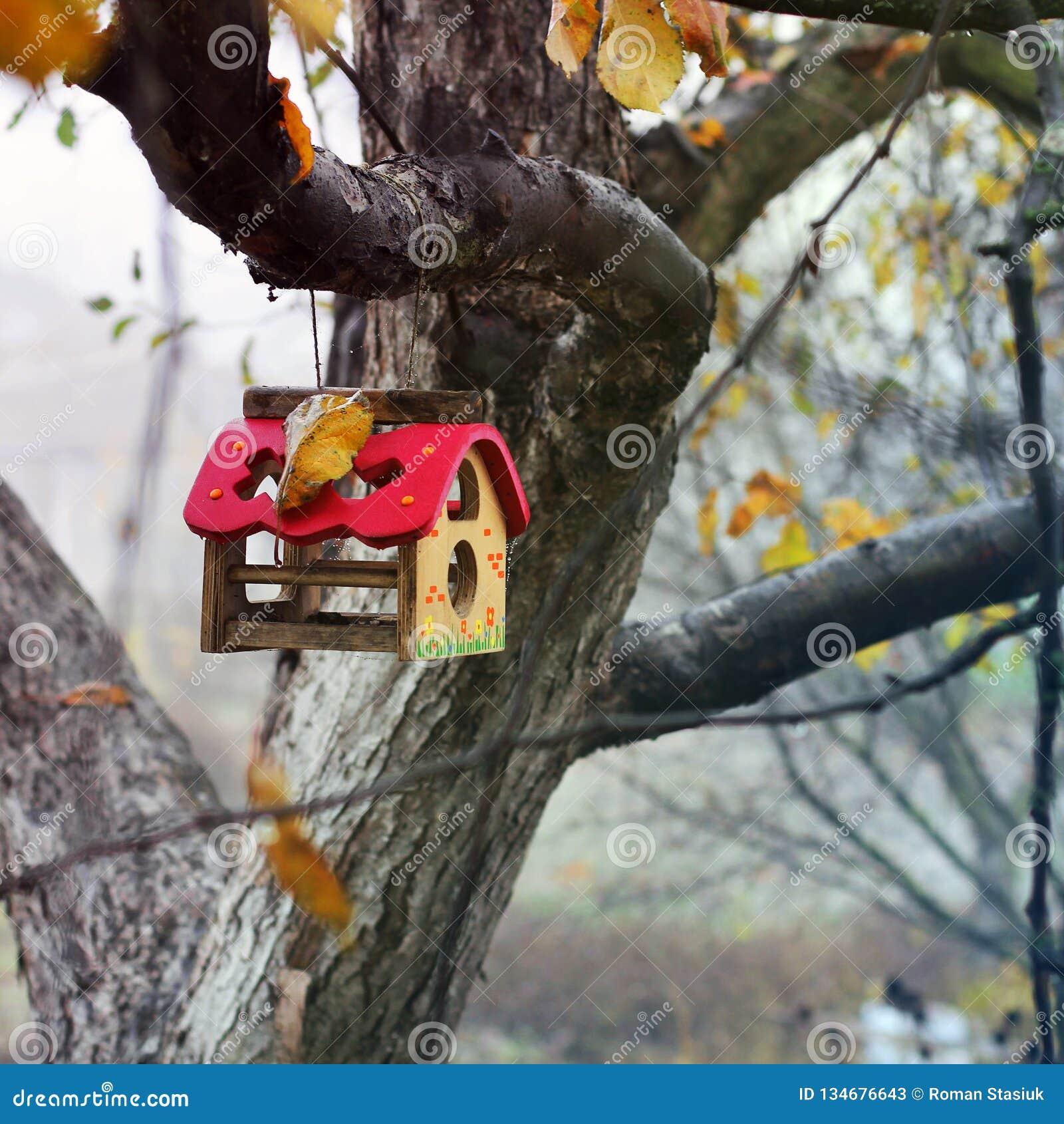 Birdhouse σε ένα δέντρο