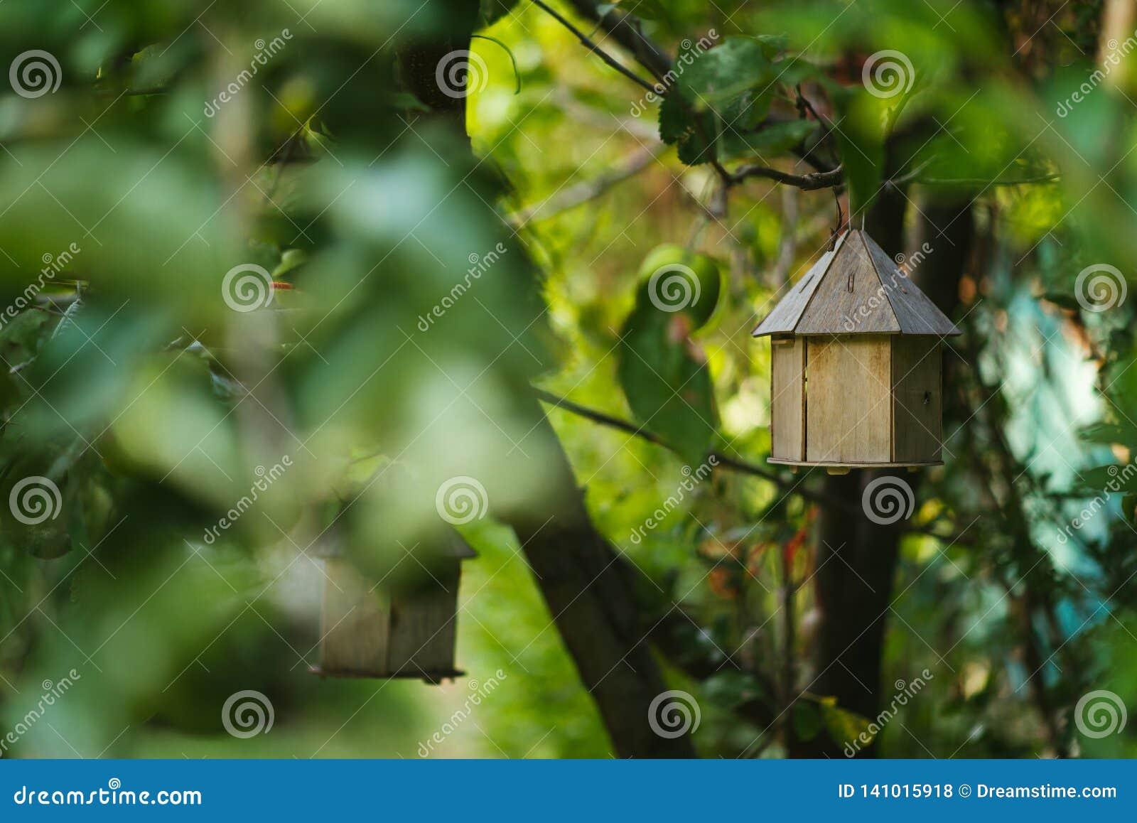 Birdhouse στο δέντρο