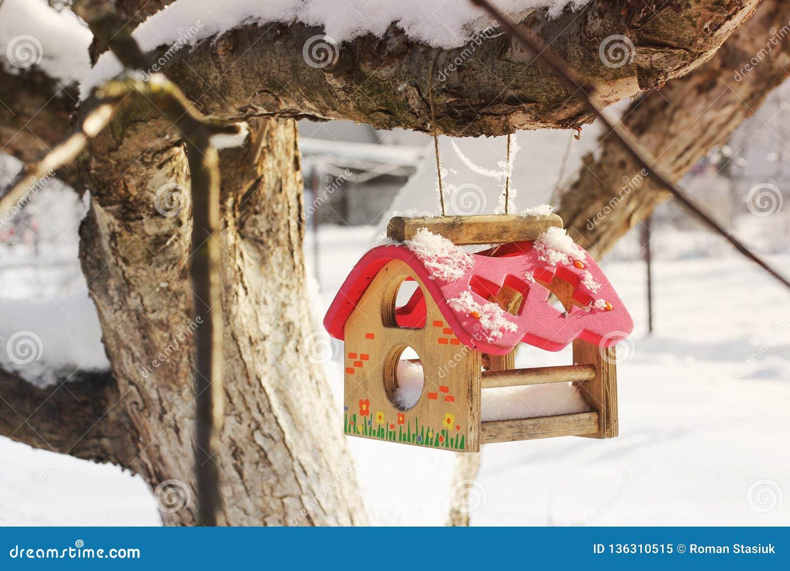 Birdhouse в зиме снаружи