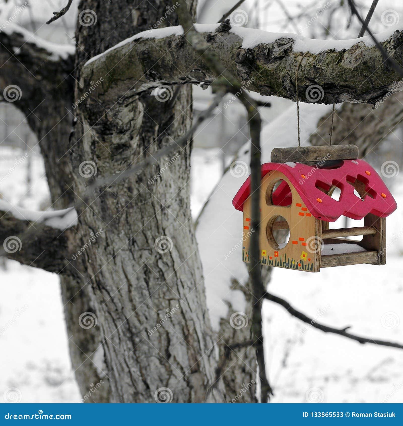 Birdhouse Dozownik dla ptaków na drzewie w zimie