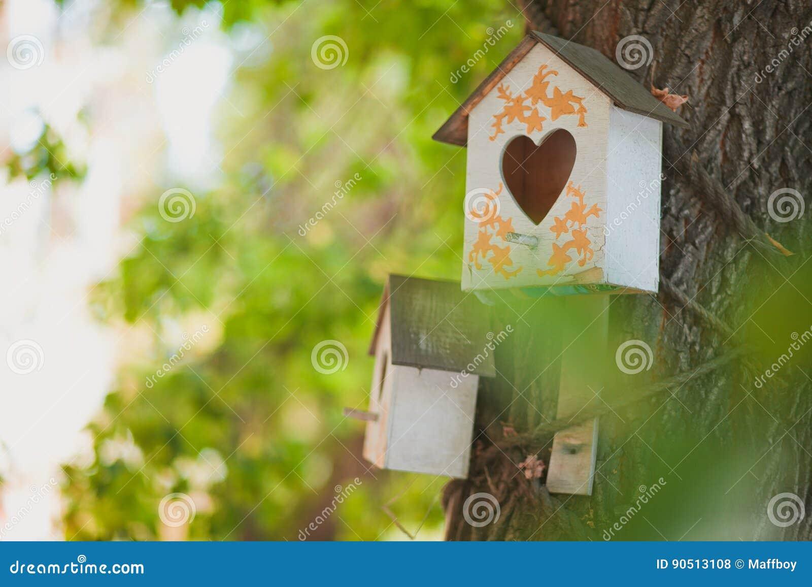 Birdhouse house for birds