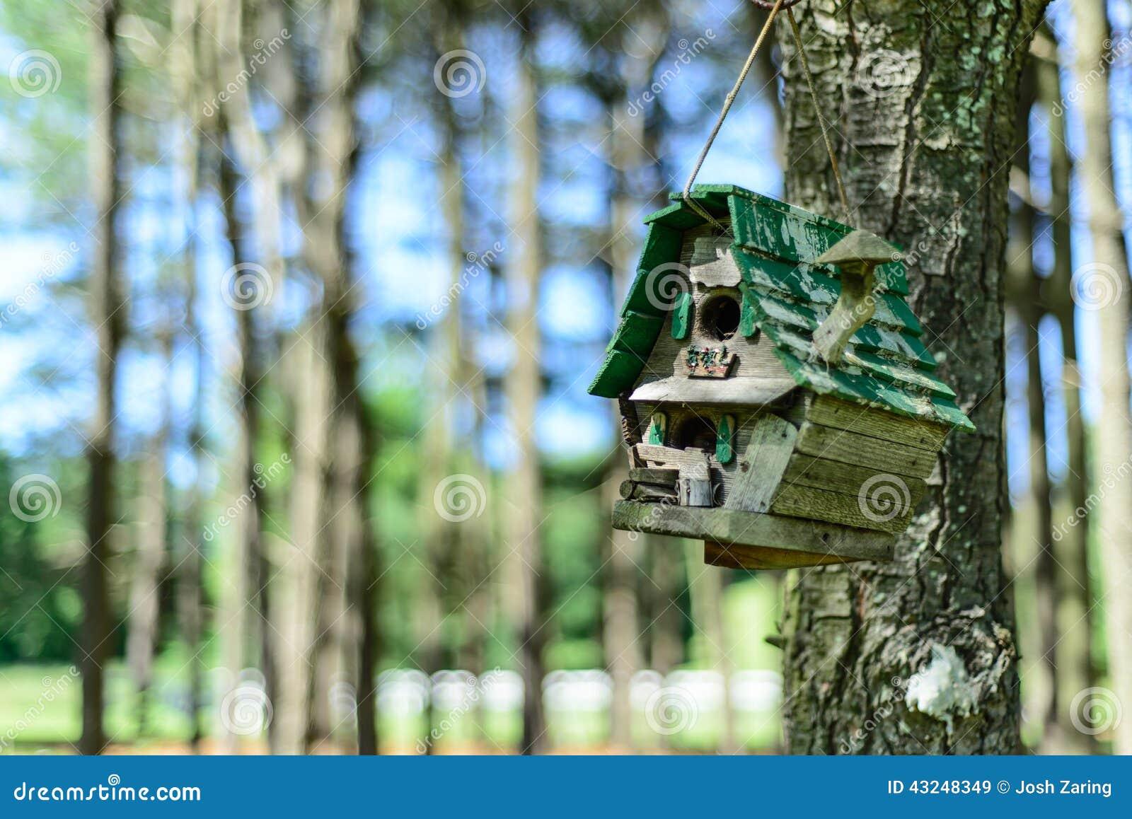 Birdhouse rustico