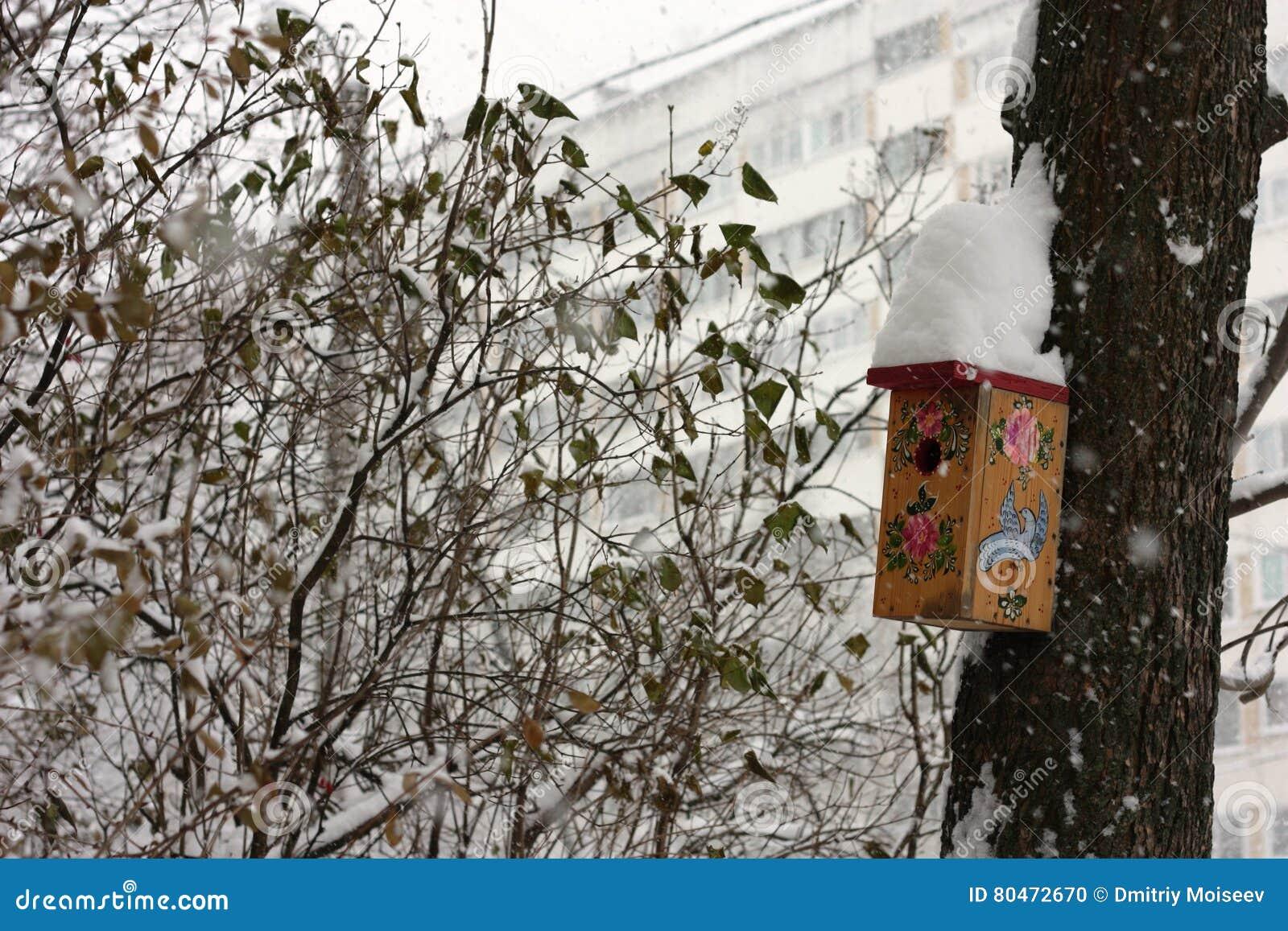 Birdhouses с снегом на крыше