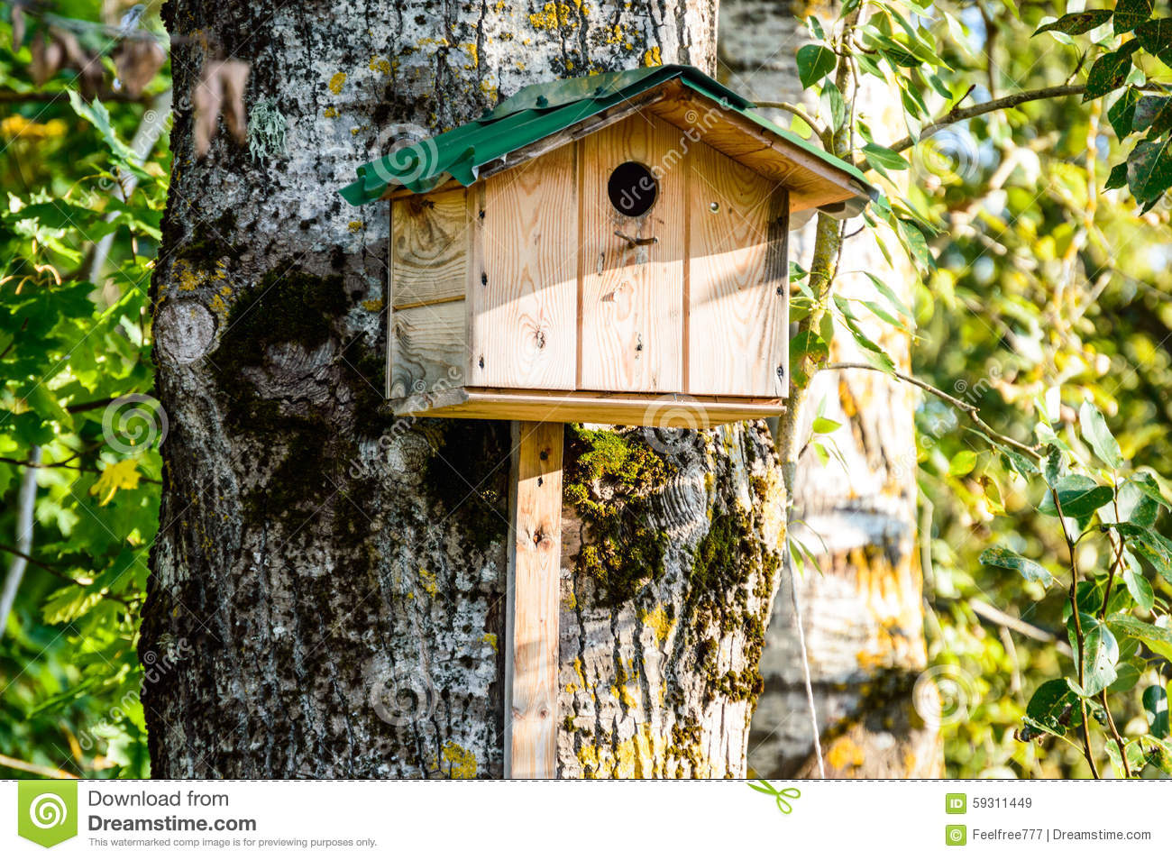 The birdies house stock photo image 59311449 for Really cute houses