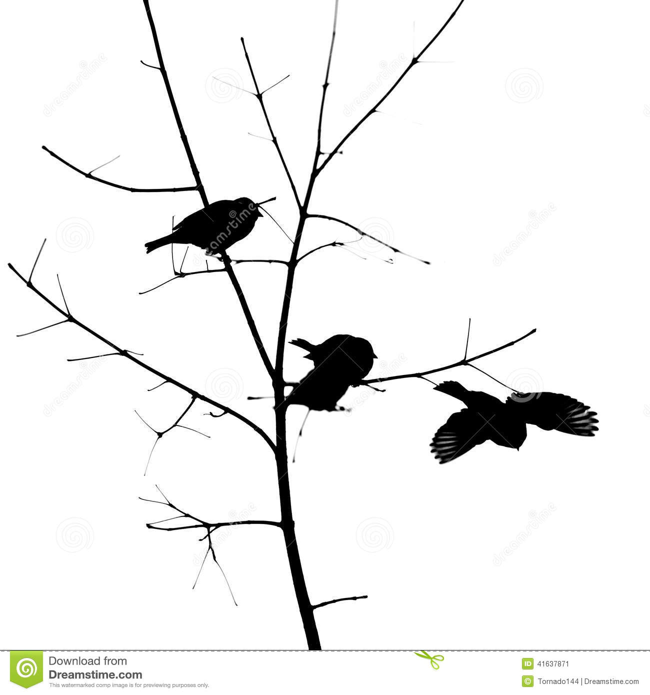 Birds Silhouettes Stock Photo - Image: 41637871