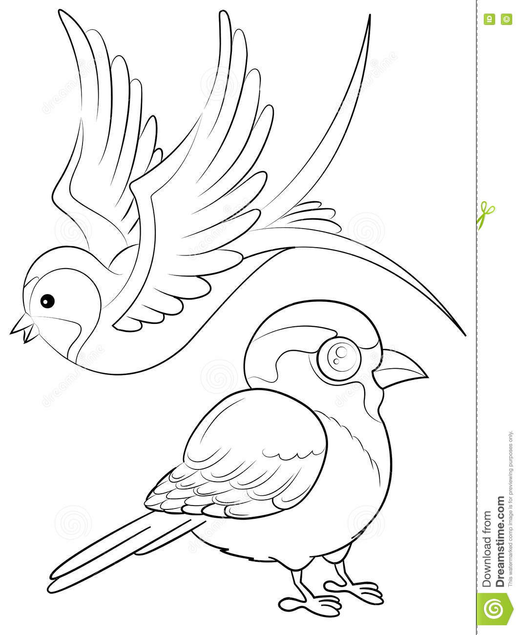 Birds Coloring Page stock image. Illustration of vector - 77177433