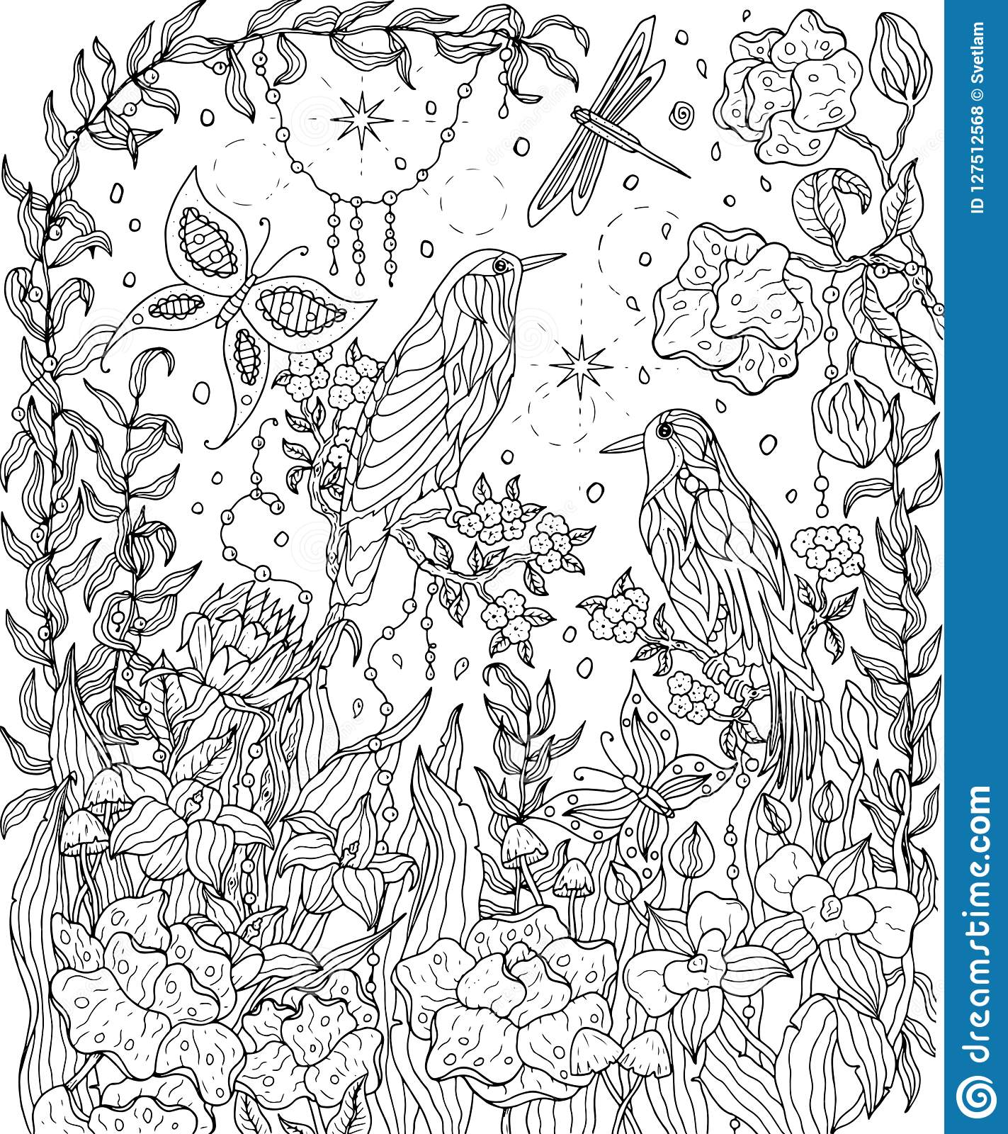Birds And Flowers Coloring Page. Birds Of Paradise Vector ...