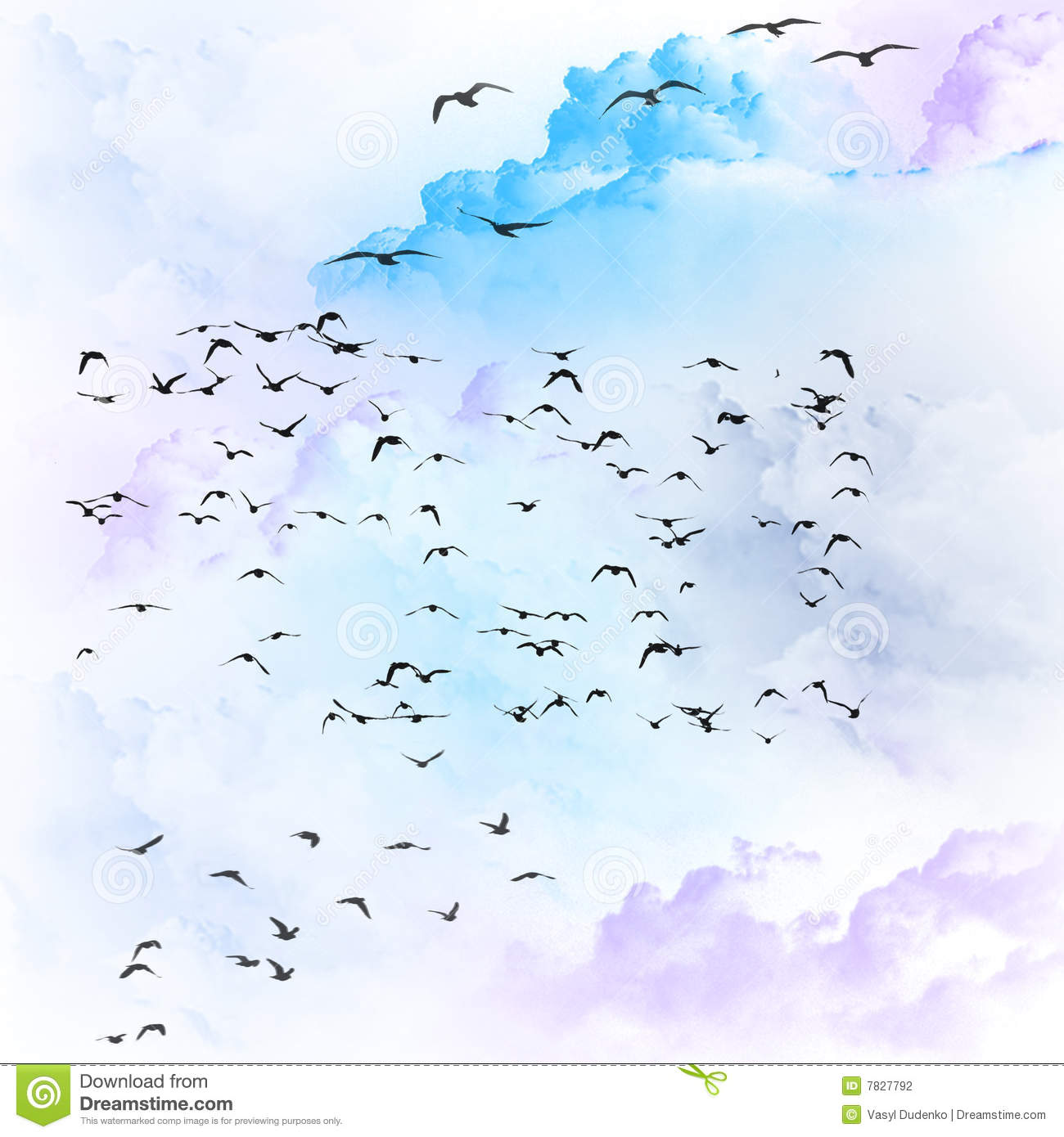 Stock Photography Birds Flying Clouds Image7827792