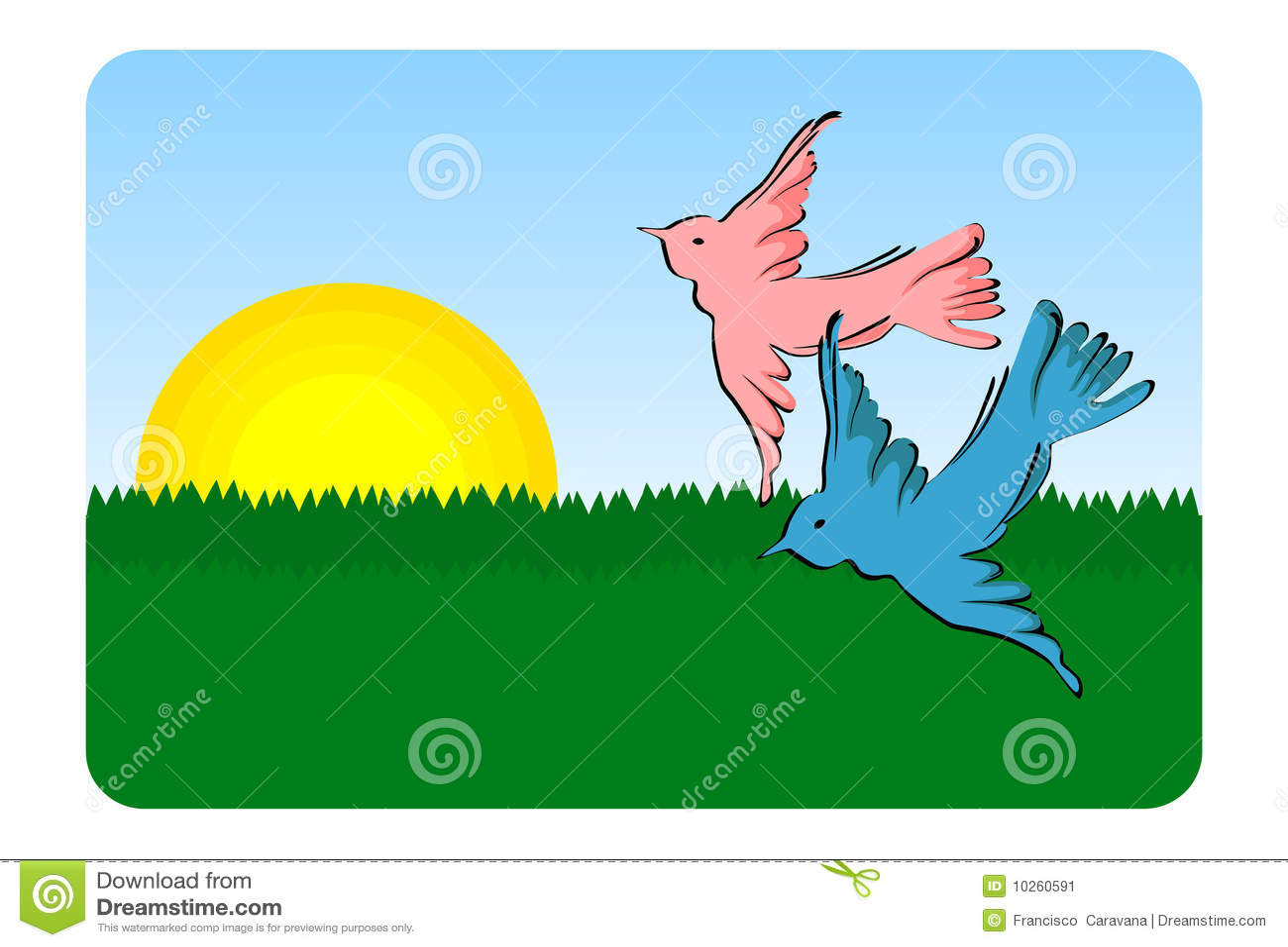 Birds flying - vector