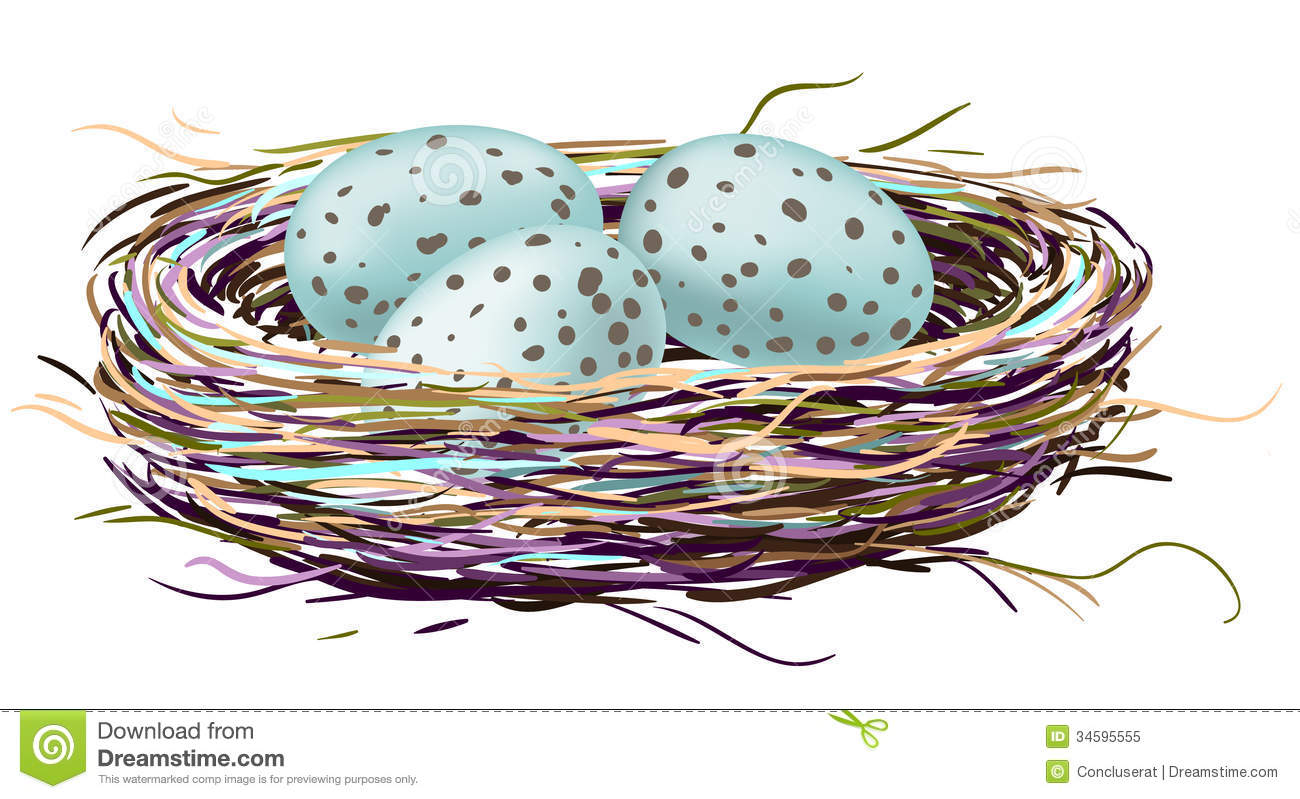 Birds Nest With Robin Eggs Royalty Free Stock Photo - Image: 34595555