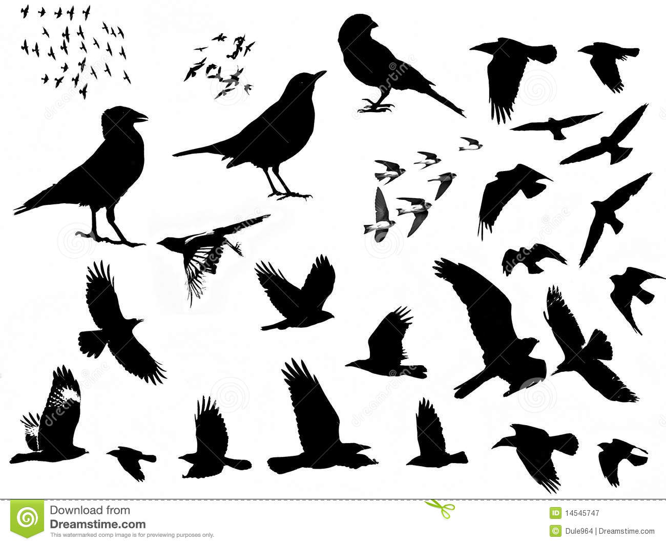 birds silhouette royalty free stock photography image 14545747