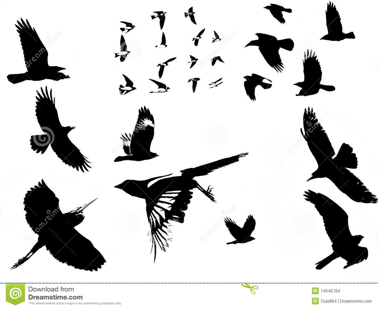 Birds Silhouette Stock Images Image 14545764