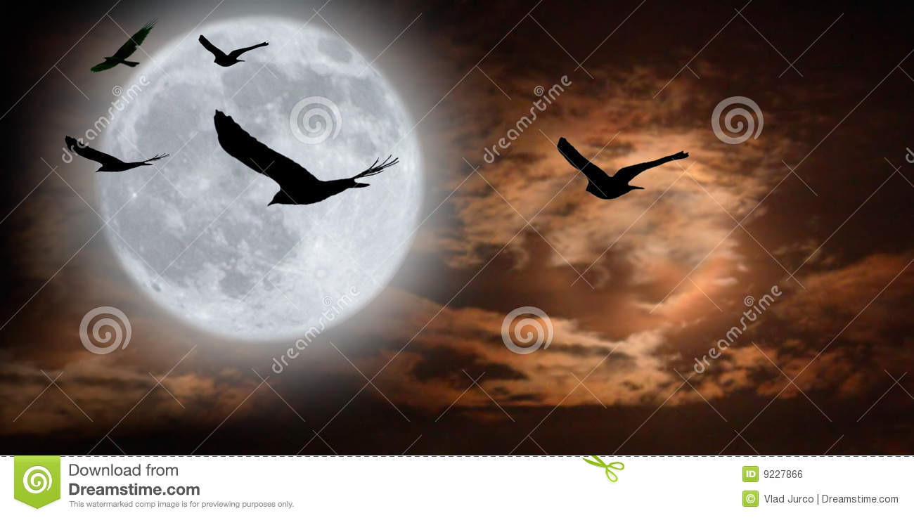 Birds and surreal moonscape