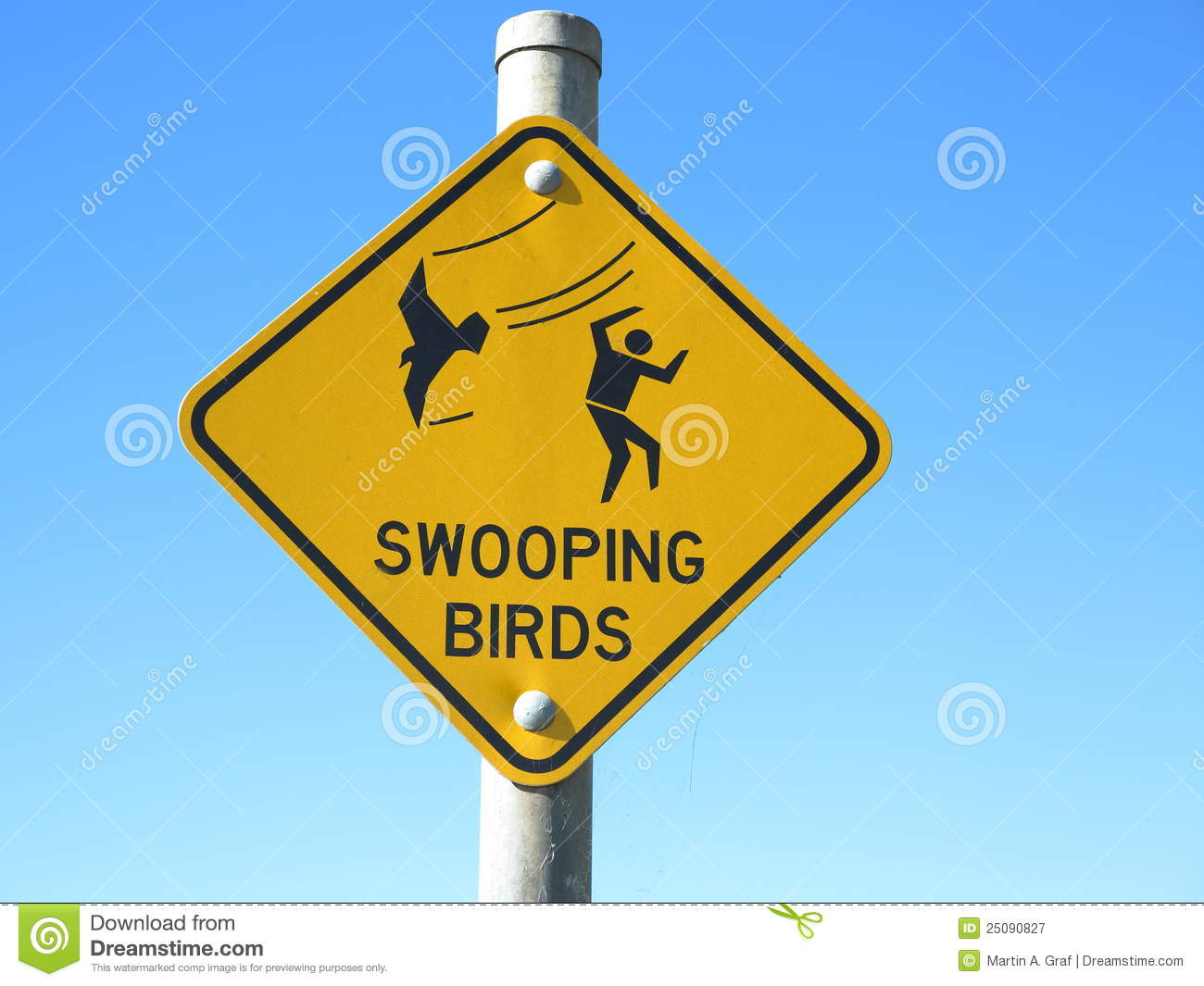 The bird out there are no joke.... | What The Fuck ...  |Australia Swooping Birds Sign