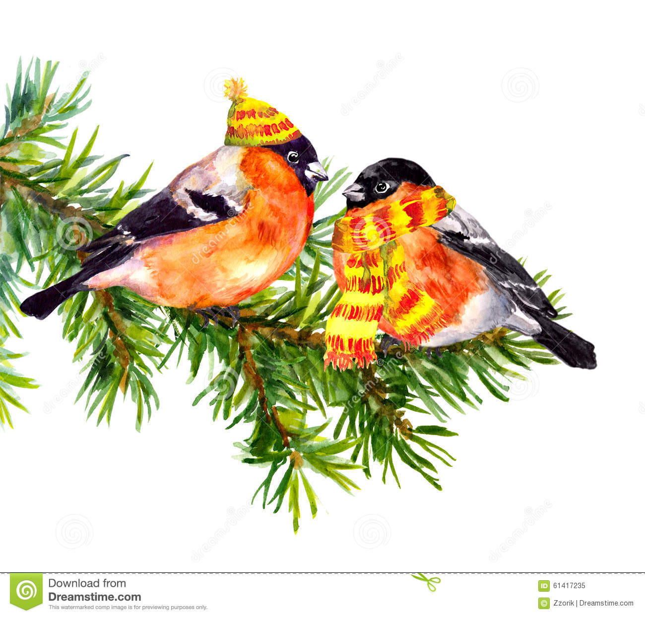 birds in winter clothes hat and scarf on pine xmas tree